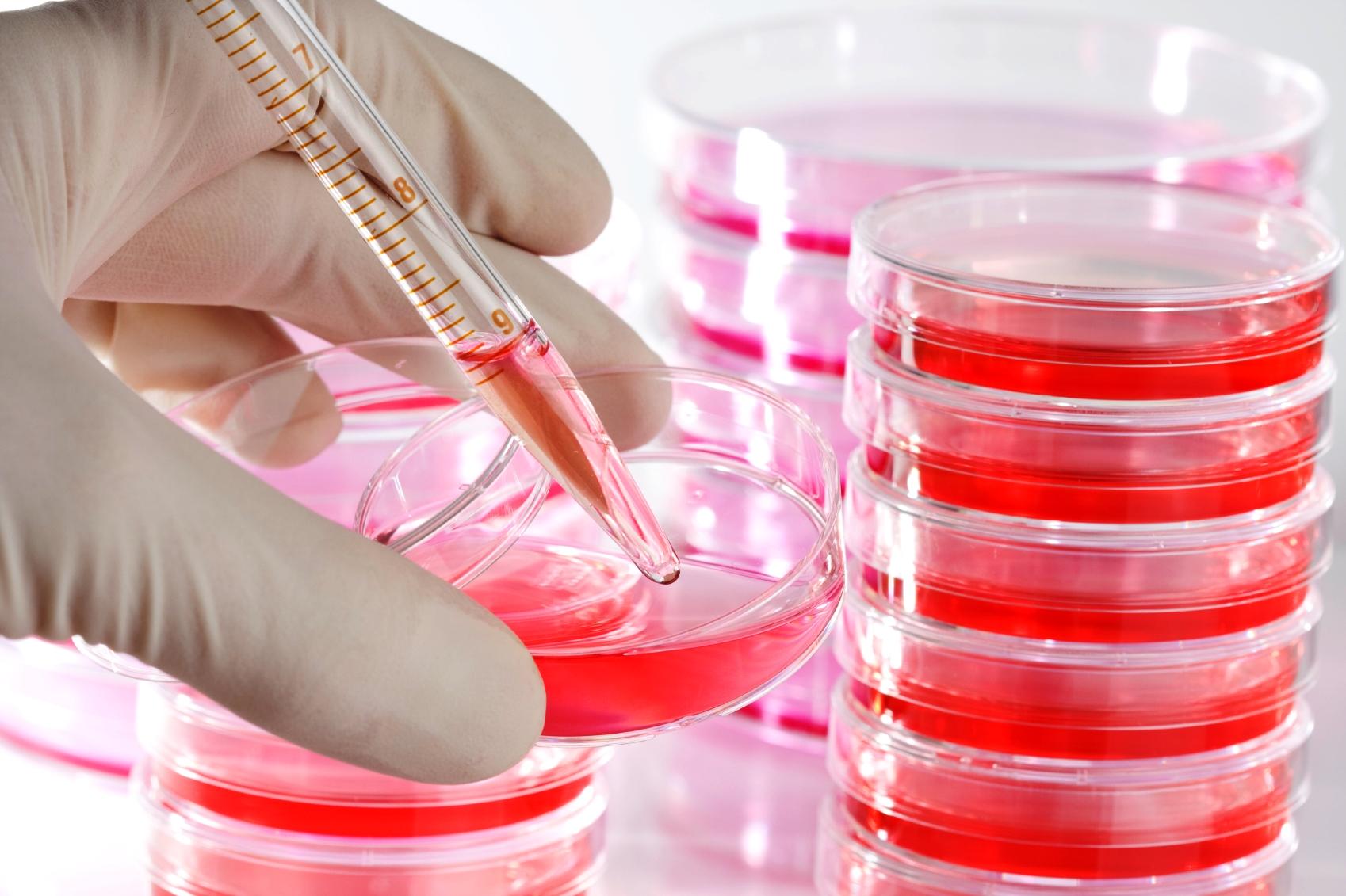 Įprastos priemonės ląstelių kultūroms