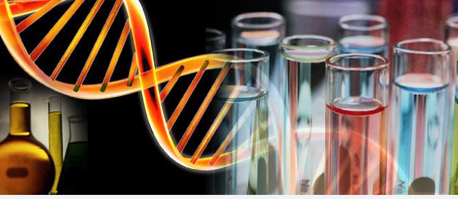 Funkcinė genomika
